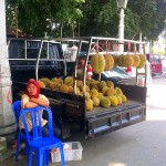 The Durian fruit: a love story